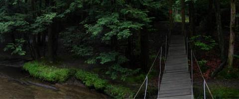 Prince Gallitzin Nature Trail
