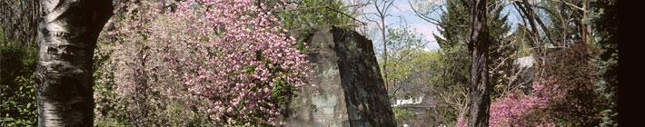 Visit Johnstown Pa   Allegheny Ridge Heritage Area